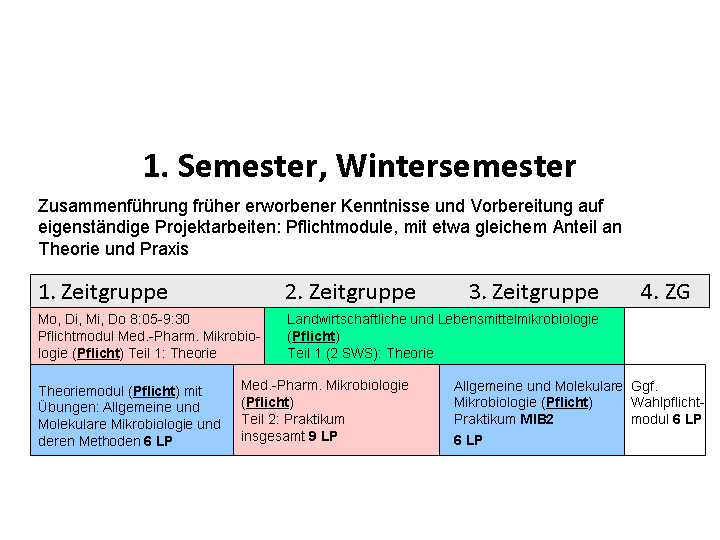 1. semester Winter